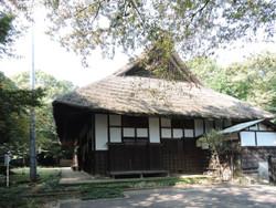 Yanasesou05
