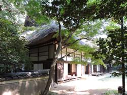 Yanasesou08