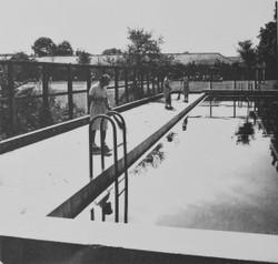 Fuzoku1951a