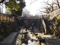 Takinogawa62