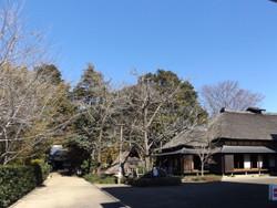 Miyashiro83