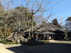 Miyashiro84