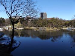 Koishikawa05