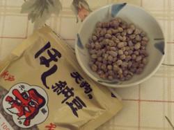 Hoshinatto3