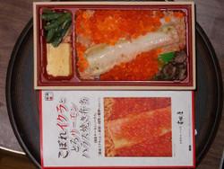 Ikura_y1