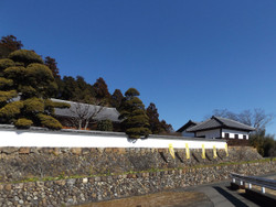 Koma_yamamoto3