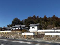 Koma_yamamoto4