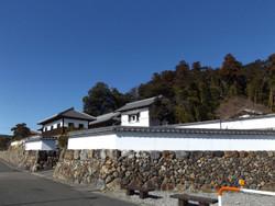 Koma_yamamoto5