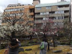 Yushima57