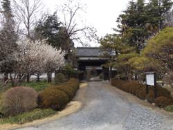 Takazawa04