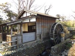 Asakawa02