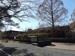 Shizenhaku12