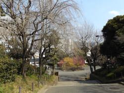 Shimizu32