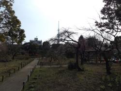 Mukoujima04