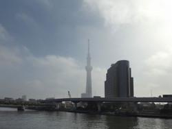Sumida_kyodo03
