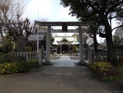Sumidaushi02