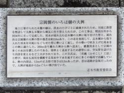 Shiki_iroha09