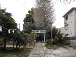 Yonohonmachi10