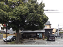 Yonohonmachi27