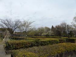 Mikawashima09