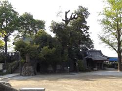Takasaki_kotohira2