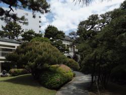 Chiba_01