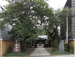Nakano62