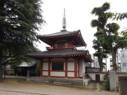 Nakano66