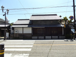Warabi_kaneko1