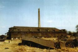 Hoffmann1978