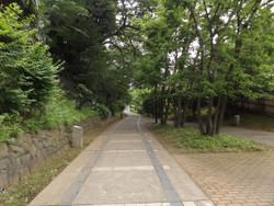 Kitaku_ryokudo3