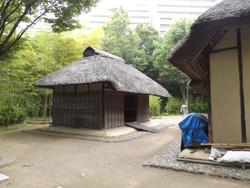 Kitaku_shizen3