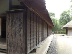 Kitaku_shizen4