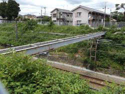 Tamagawa13