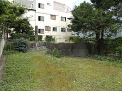 Mebashi_shiro3