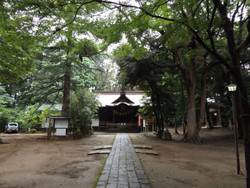 Urawa_hikawa01