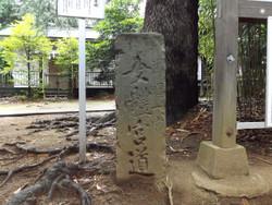 Urawa_hikawa04