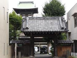 Warabi_shiro11