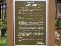 Asaka_hirosawa9