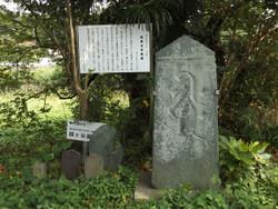Koshigaya_goten4