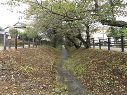 Urawa_minuma3