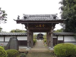 Ebina01