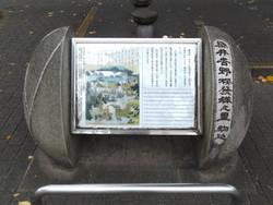 Komagome_someiyoshino1