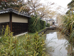 Ohmiya_nagata7