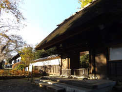 Urawa_kichijyoji86
