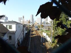 Musashinisen_shirahata2