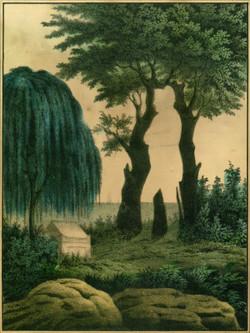 Tric_napoleon