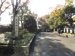 Shibarikyu01