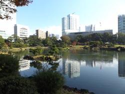 Shibarikyu09