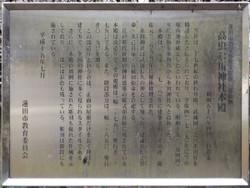 Hasuda_takamushi9